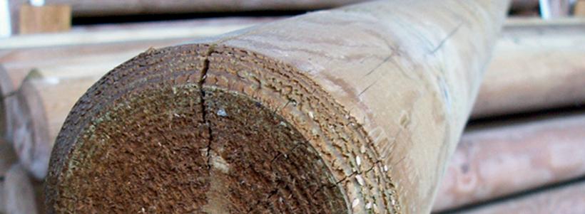 Rondin et demi rondin en pin sylvestre disponible en région centre val de loire